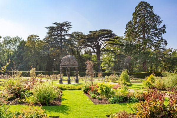 Discover Corkagh Park rose garden
